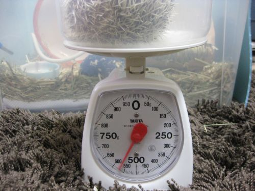 体重記録(2008/12/30)
