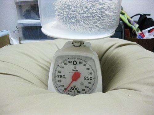 体重記録(2008/01/11)