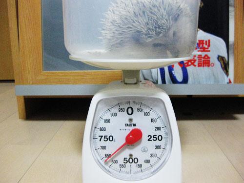 体重記録(2009/01/18)
