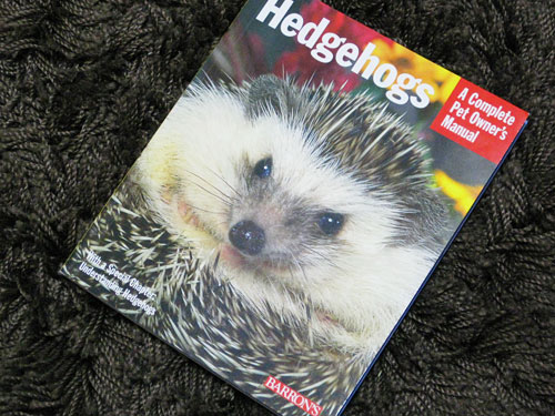 洋書「Hedgehogs」