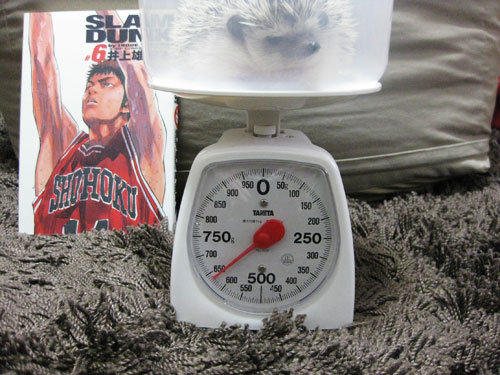 体重記録(2009/02/22)