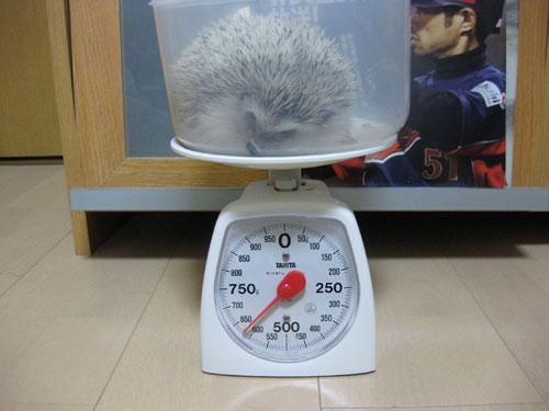 体重記録(2009/03/09)