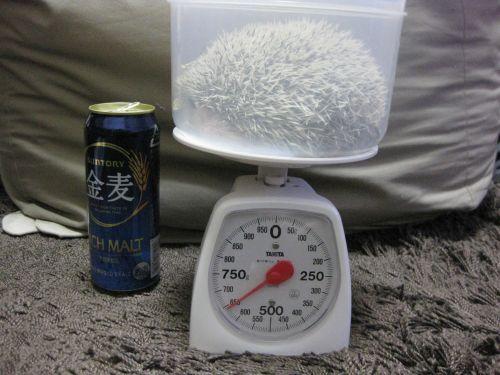 体重記録(2009/03/15)